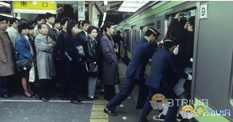 Train Trivia:Japanese trains have people who push people on the train.