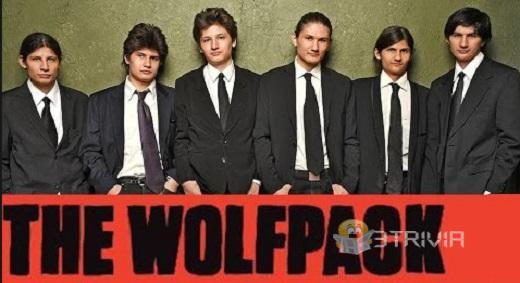 Strange documentary THE WOLFPACK (2015)