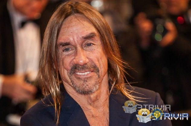 Promising Celeb Endorsements That Went Spectacularly Wrong of Iggy Pop Can't Get Swiftcovered