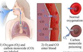 Carbon dioxide Trivia:Closing in a confined space will first kill you with carbon dioxide poisoning