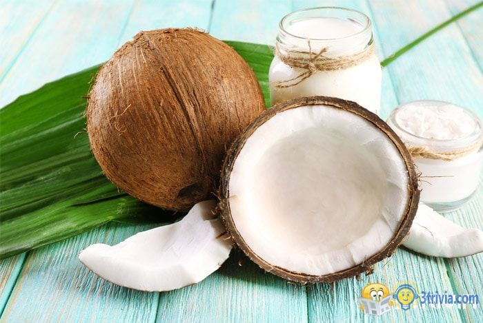 Coconut Trivia:Can coconut juice really be used for infusion of patients?
