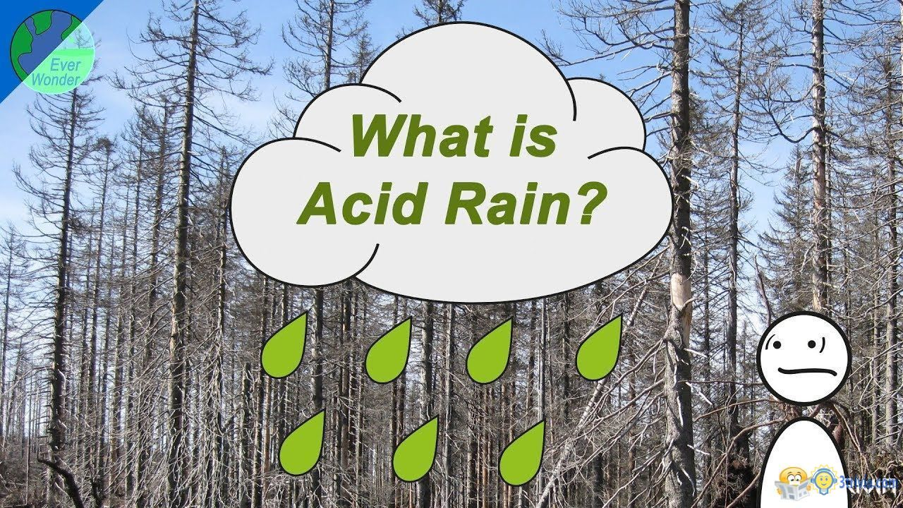 Acid rain Trivia:How is acid rain formed?