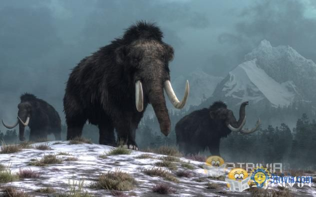 April Fools' Day Trivia:The mammoth is resurrected