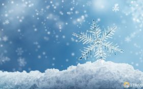 Snow Trivia:All snowflakes are hexagons