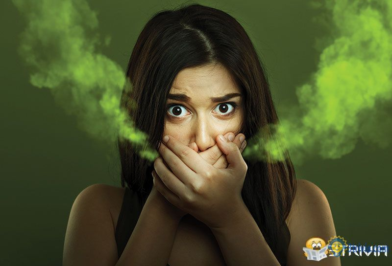 Bad breath trivia:How to judge whether you have bad breath