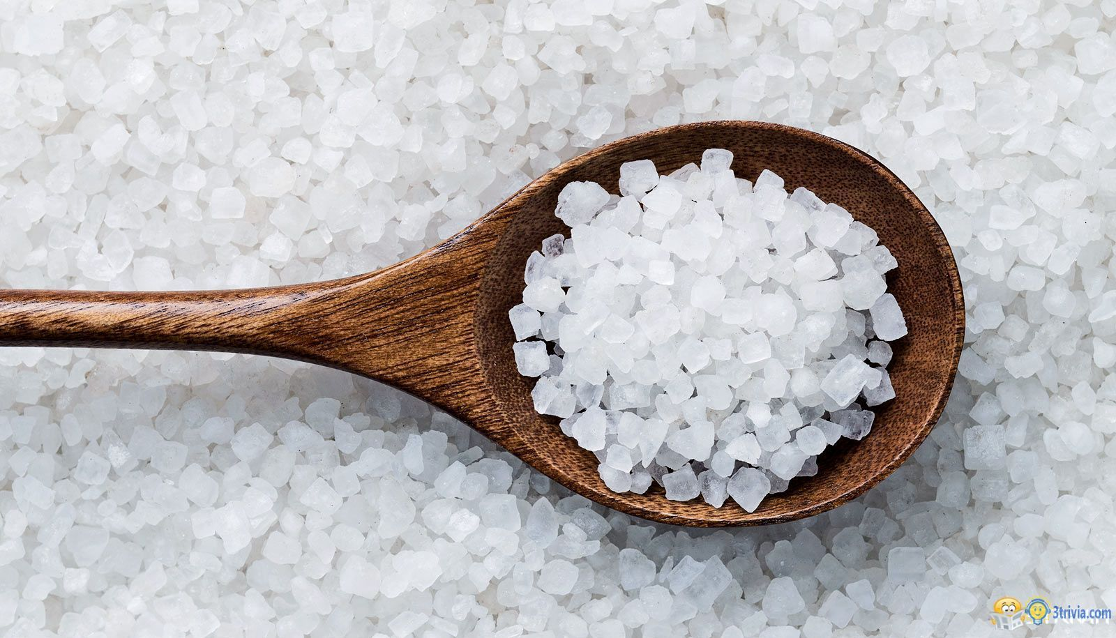 Salt trivia:Why is salt antibacterial?
