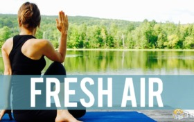 Air trivia:When is the air freshest in the day?