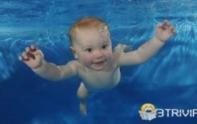 Baby trivia:Is the baby born to swim?