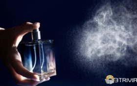 Perfume trivia:How to make the fragrance last for a long time