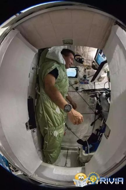 Sleeping trivia:How do astronauts sleep in space?