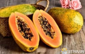 Breast enhancement trivia:Papaya breast enhancement is a rumor
