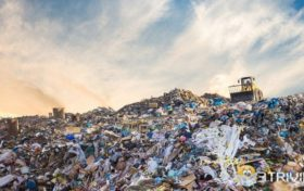 Garbage trivia:Which country produces the most garbage per capita?