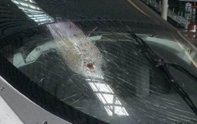 Hit trivia:How serious is the high-speed train hit by a bird?