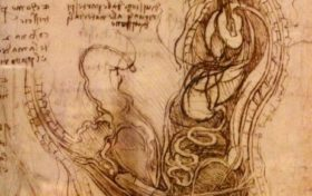 Da Vinci Trivia: Draw an X-ray picture of sexual intercourse