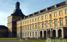 Free trivia:Are public universities in Germany free?
