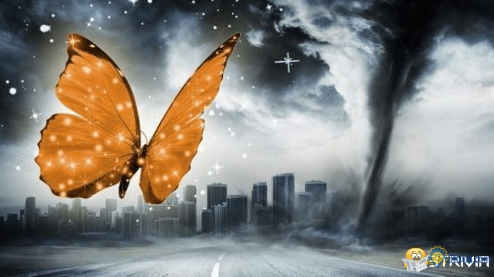 """Scientific trivia: what is the """"butterfly effect"""""""