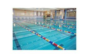 Pool Trivia: The actual length of a standard 50m swimming pool should be greater than 50m