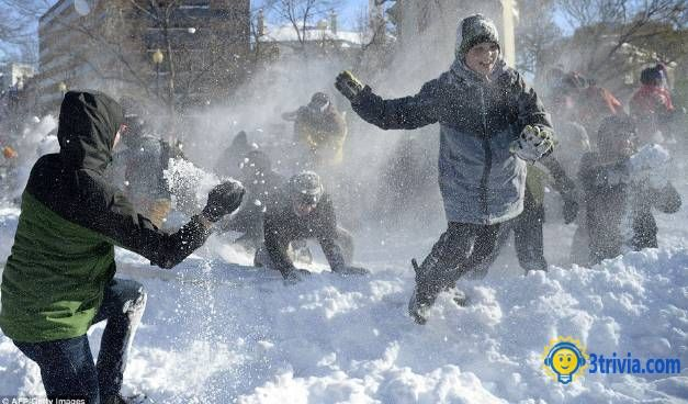 Wrong children's game: Snowball Fight Turns Into Race Brawl