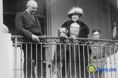 First lady trivia: Florence Harding was Accused of Murder