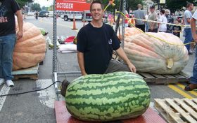 Watermelon trivia: The largest watermelon in the world.