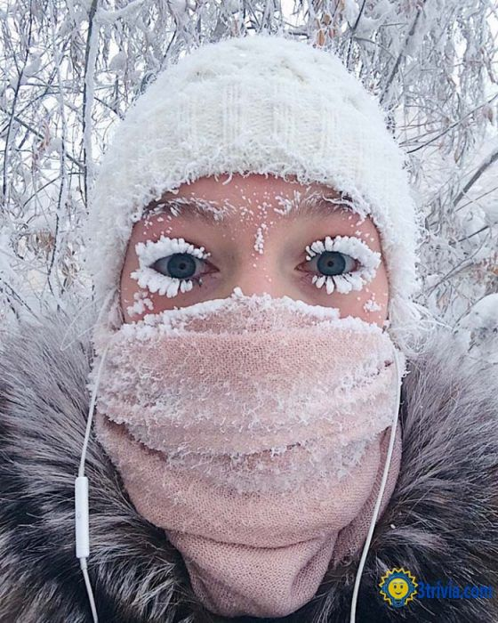 Lifetime trivia: The world's longest-lived village, Oymyakon, the temperature can reach minus 71 degrees